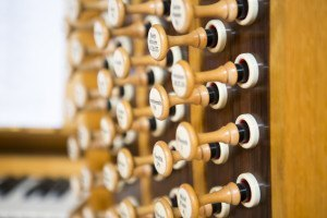 music-cathedralorgan2